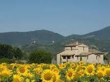 umbria vacation package