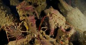 ancient roman shipwreck vase