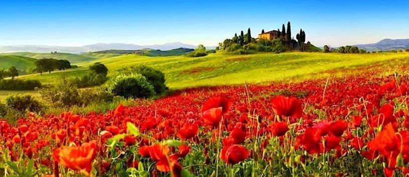 Tuscany sightseeing